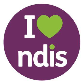 NDIS-Logo-500x500